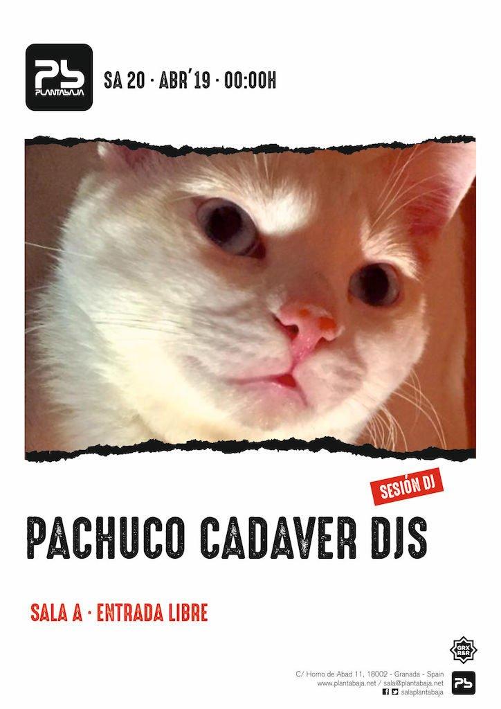Pachuco Cadaver DJs Planta Baja
