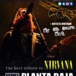The Buzz Lovers + My Oh Guru Mai Planta Baja