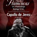 CAPULLO DE JERÉZ Planta Baja