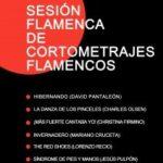 SESIÓN DE CORTOS FLAMENCOS (VVAA) Planta Baja