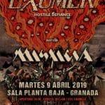 EXUMER (CANCELADO) Planta Baja
