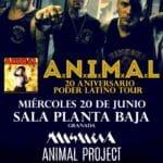 A.N.I.M.A.L + Heleve + Change + Misticia Planta Baja