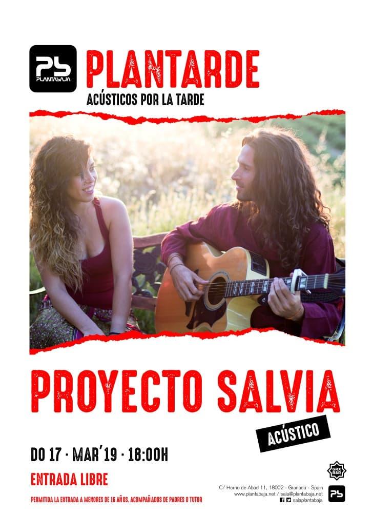 Plantarde PROYECTO SALVIA Planta Baja