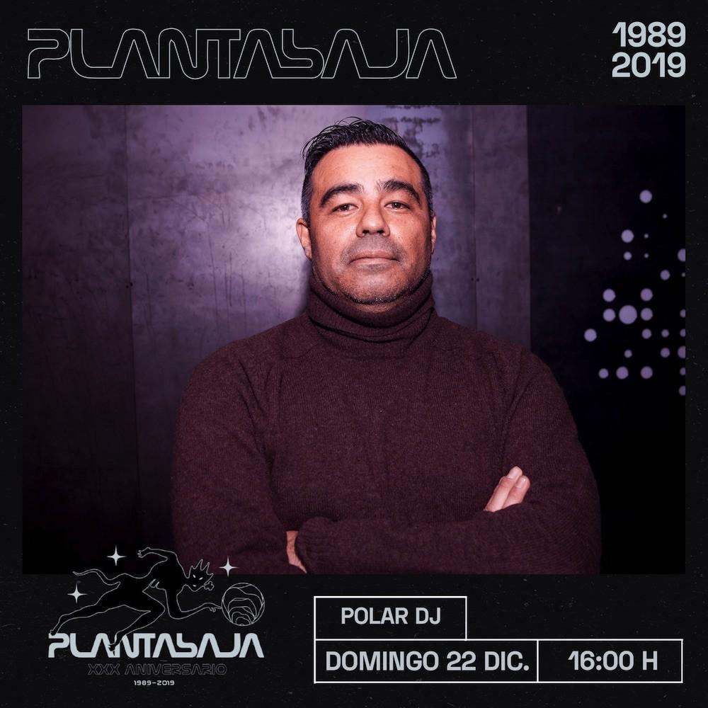 Polar DJ Planta Baja